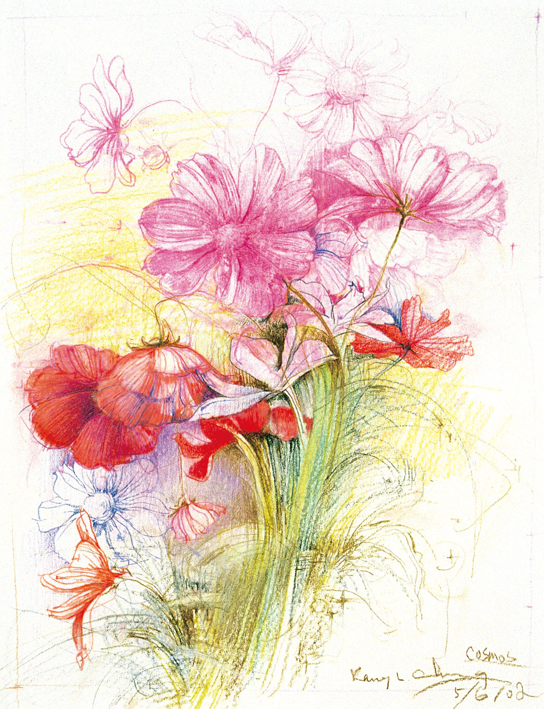 彩色铅笔画 简单 手绘