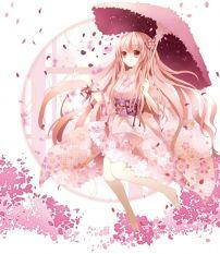 樱花的女孩